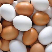 مارکیٹ میں چائنہ سےامپورٹڈ جعلی انڈے دستیاب...حیران کن انکشاف......